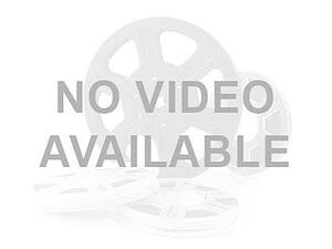 no video-1