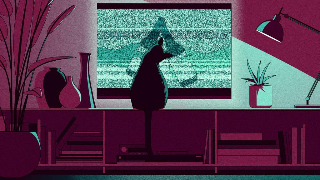 Телеканалы готовятся к падению рекламы